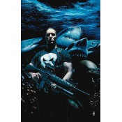 The Punisher (4)