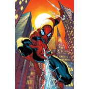 Spiderman (17)